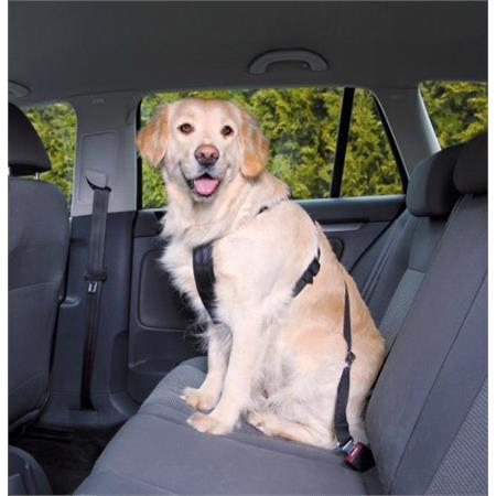 Dog Car Seat Belt and Harness   Extra Large Dogs (80 110cm)