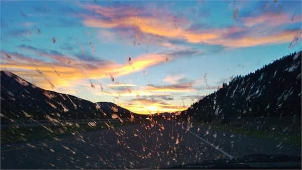 DrivingAbroad_bugsonwindscreen