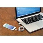 Apple Lightning Charging Cable   100 cm   White